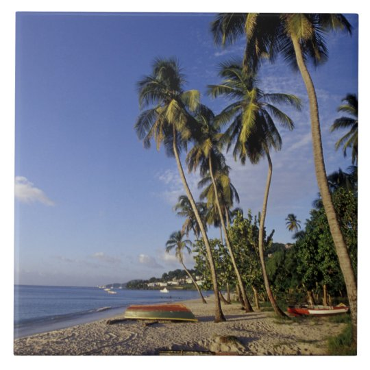 CARIBBEAN, Grenada, St. George, Boats on palm Tile