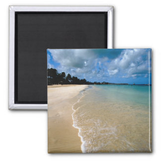 Caribbean, Leeward Islands, Antigua, Dickenson 2 Inch Square Magnet
