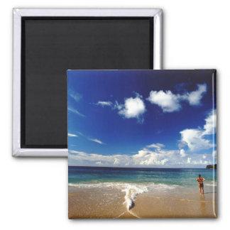 Caribbean, Lesser Antilles, West Indies, 2 2 Inch Square Magnet