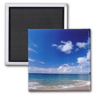 Caribbean, Lesser Antilles, West Indies, 2 Inch Square Magnet