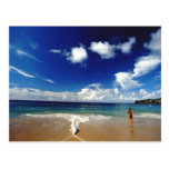 Caribbean, Lesser Antilles, West Indies, 2 Postcard