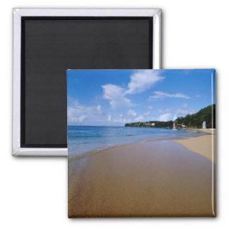 Caribbean, Lesser Antilles, West Indies, 3 2 Inch Square Magnet