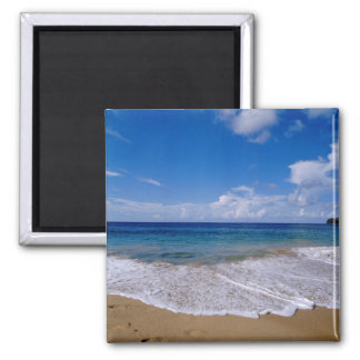 Caribbean, Lesser Antilles, West Indies, 4 2 Inch Square Magnet