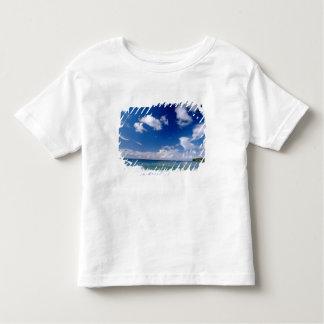 Caribbean, Lesser Antilles, West Indies, 5 Toddler T-shirt