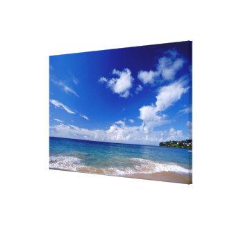 Caribbean, Lesser Antilles, West Indies, Canvas Print