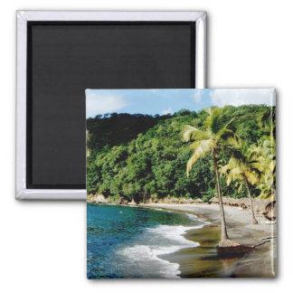 Caribbean, Lesser Antilles, West Indies, Saint 2 Inch Square Magnet