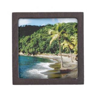 Caribbean, Lesser Antilles, West Indies, Saint Jewelry Box