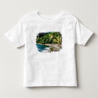 Caribbean, Lesser Antilles, West Indies, Saint Shirt