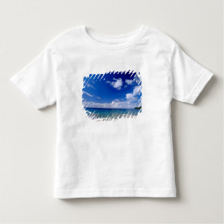 Caribbean, Lesser Antilles, West Indies, Toddler T-shirt