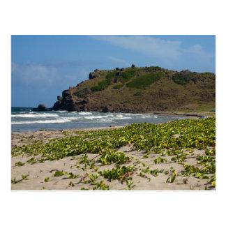 Caribbean lsland Deserted Beach Scene Postcard