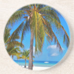 Caribbean palm tree drink coaster