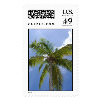 Caribbean palm tree postage