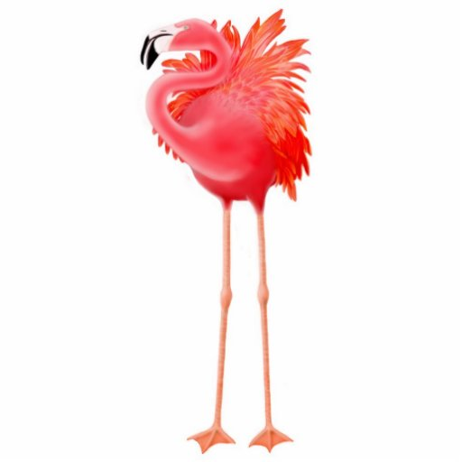 Caribbean Pink Flamingo Holiday Ornament Cut Out Zazzle