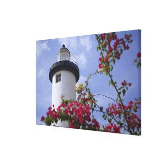 Caribbean, Puerto Rico, Viegues Island. The Gallery Wrap Canvas