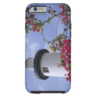 Caribbean, Puerto Rico, Viegues Island. The iPhone 6 Case