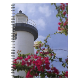 Caribbean, Puerto Rico, Viegues Island. The Spiral Notebook
