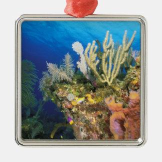 Caribbean. Reef. Metal Ornament