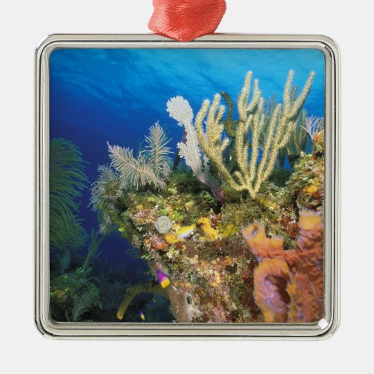Caribbean. Reef. Metal Ornament