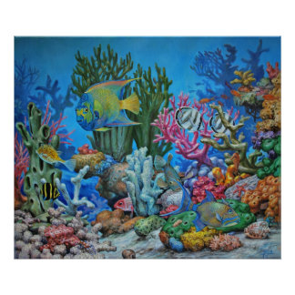 Caribbean Reef Print