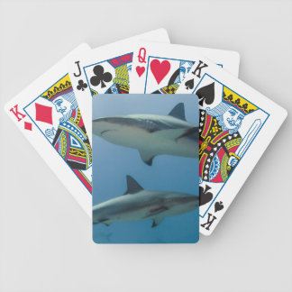 Caribbean Reef Shark Bicycle Playing Cards
