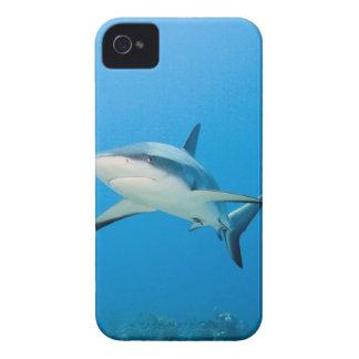 Caribbean reef shark (Carcharhinus perezi) Case-Mate iPhone 4 Case