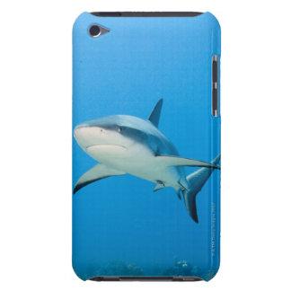 Caribbean reef shark (Carcharhinus perezi) iPod Touch Cover
