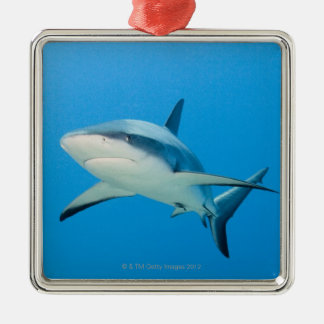 Caribbean reef shark (Carcharhinus perezi) Metal Ornament