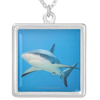 Caribbean reef shark (Carcharhinus perezi) Silver Plated Necklace