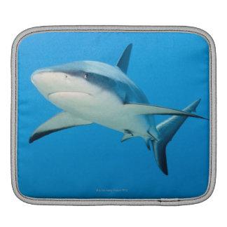 Caribbean reef shark (Carcharhinus perezi) Sleeve For iPads