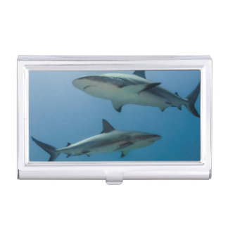 Caribbean Reef Shark Case For Business Cards