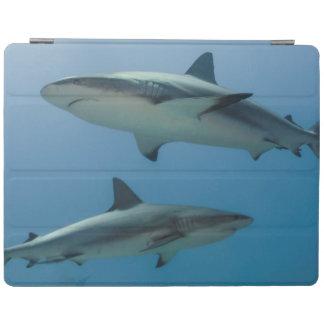 Caribbean Reef Shark iPad Cover