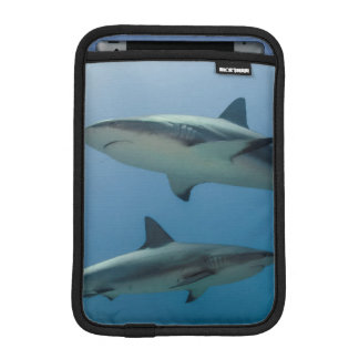 Caribbean Reef Shark iPad Mini Sleeve