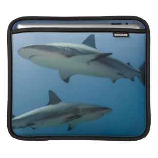 Caribbean Reef Shark iPad Sleeves