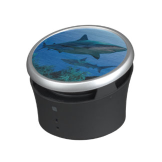 Caribbean Reef Shark Jardines de la Reina Bluetooth Speaker