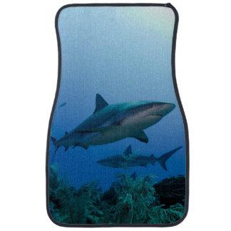 Caribbean Reef Shark Jardines de la Reina Car Floor Mat