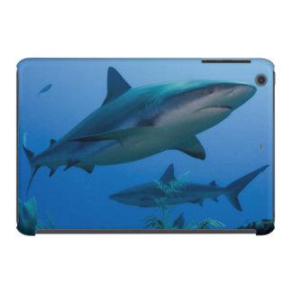 Caribbean Reef Shark Jardines de la Reina iPad Mini Retina Case
