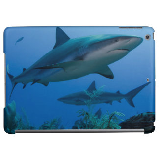 Caribbean Reef Shark Jardines de la Reina iPad Air Cases