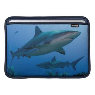 Caribbean Reef Shark Jardines de la Reina MacBook Sleeve