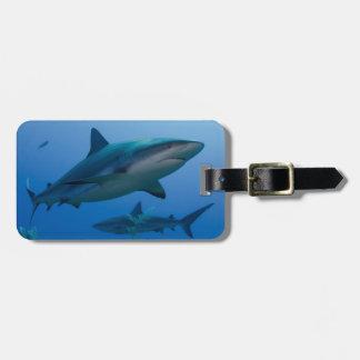 Caribbean Reef Shark Jardines de la Reina Luggage Tag