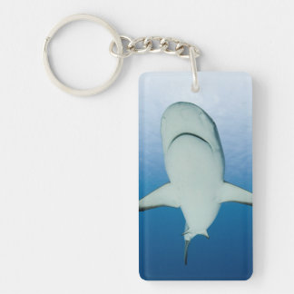 Caribbean Reef Shark Key Chain