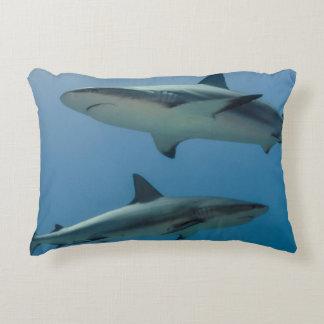 Caribbean Reef Shark Accent Pillow