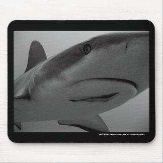 Caribbean Reef Shark Mouse Pad