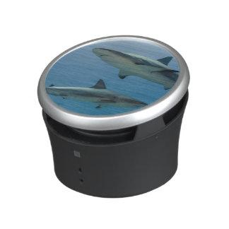 Caribbean Reef Shark Bluetooth Speaker