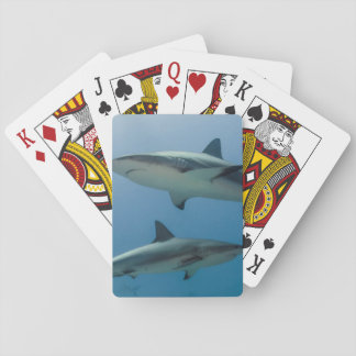 Caribbean Reef Shark Playing Cards