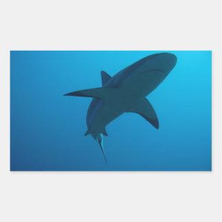 Caribbean Reef Shark Rectangular Sticker