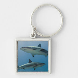 Caribbean Reef Shark Silver-Colored Square Keychain