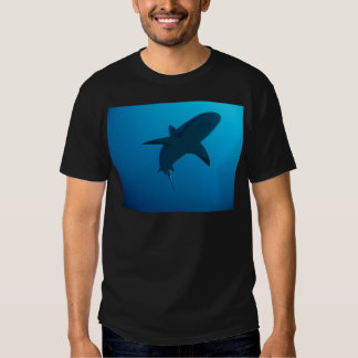Caribbean Reef Shark Tee Shirt