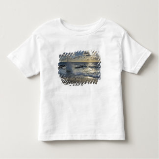 Caribbean Sea, Cayman Islands.  Crashing waves Toddler T-shirt