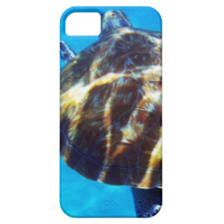 Caribbean Sea Turtle Swimming Away iPhone 5 Covers