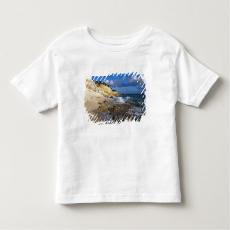 Caribbean, St. Martin, Cliffs at Cupecoy beach Toddler T-shirt